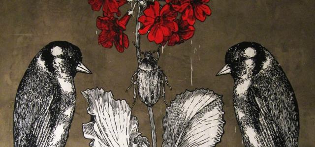 gallery-lucamaleonte-01